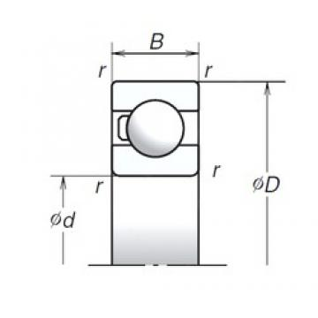35 mm x 80 mm x 21 mm  NSK 6307T1X Double Row Cylindrical Roller Bearings